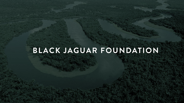BJF, Black Jaguar Foundation, Rainforest